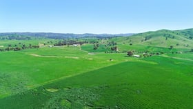 Rural / Farming commercial property for sale at 2755 Triamble Road Mudgee NSW 2850