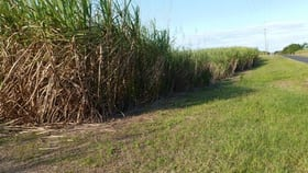 Rural / Farming commercial property for sale at New Harbourline QLD 4858