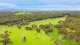 Rural / Farming commercial property for sale at Smiths Road Balmoral VIC 3407