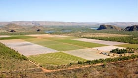 Rural / Farming commercial property for sale at Kununurra WA 6743