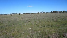 Rural / Farming commercial property for sale at Lot 3 Old Princes Highway Murray Bridge East SA 5253
