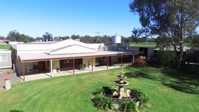 Rural / Farming commercial property for sale at 4134 Murray Valley Hwy Cobram VIC 3644