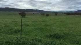 Rural / Farming commercial property for sale at Tamworth NSW 2340