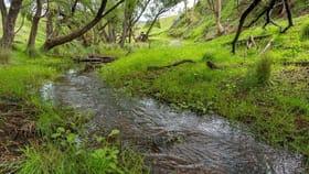 Rural / Farming commercial property for sale at 1452A Ganbenang Road Kanimbla NSW 2790