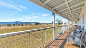 Rural / Farming commercial property for sale at 136 Tetzlaff Lane Mount Beppo QLD 4313