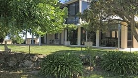 Rural / Farming commercial property for sale at 161 Hampton Road Naracoorte SA 5271