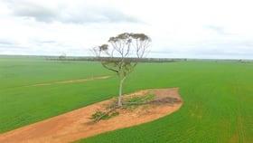 Rural / Farming commercial property for sale at . 'Gordon's' Bencubbin WA 6477