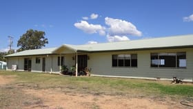 Rural / Farming commercial property for sale at 108 Michael's Lane Warialda NSW 2402