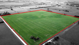 Rural / Farming commercial property for sale at Lot 12 Hill Road Yahl SA 5291