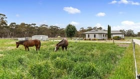 Rural / Farming commercial property for sale at 519 Rowney Road Mundulla SA 5270