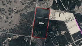 Rural / Farming commercial property for sale at 0 Wilkins Road Cecil Plains QLD 4407