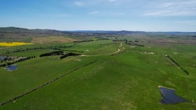 Rural / Farming commercial property for sale at 1892 Captains Flat Road Primrose Valley NSW 2621