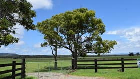 Rural / Farming commercial property for sale at Lot 591 Right Bank Road Belmore River NSW 2440