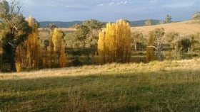 Rural / Farming commercial property for sale at 225 Bradene Road Mandurama NSW 2792