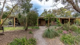 Rural / Farming commercial property for sale at 133 Hawkins Road Longford VIC 3851