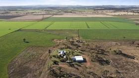 Rural / Farming commercial property for sale at 3808 Pechey/Maclagan Road Brymaroo QLD 4403