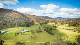 Rural / Farming commercial property for sale at 2685 Eurobodalla Road Nerrigundah NSW 2545