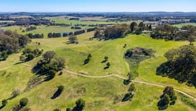 Rural / Farming commercial property for sale at Mount Ashby Road Moss Vale NSW 2577