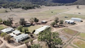 Rural / Farming commercial property for sale at 1949 Martindale Road Denman NSW 2328