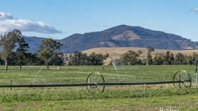 Rural / Farming commercial property sold at 941 Middle Falbrook Road Singleton NSW 2330