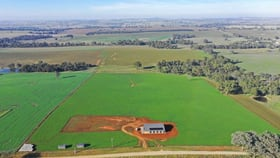 Rural / Farming commercial property for sale at Harden NSW 2587