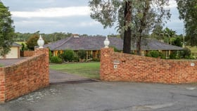 Rural / Farming commercial property for sale at 204 Wine Country Drive Nulkaba NSW 2325