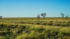 Rural / Farming commercial property for sale at 8787 Cumborah Road Walgett NSW 2832