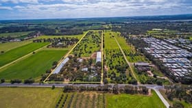 Rural / Farming commercial property for sale at 66 Hillier Road Hillier SA 5116