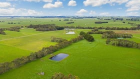 Rural / Farming commercial property for sale at 413 Willatook Warrong Road Warrong VIC 3283