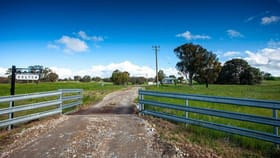 Rural / Farming commercial property for sale at 656 Kangaloolah Road Binda NSW 2583