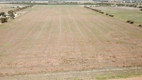 Rural / Farming commercial property for sale at 163 Brand Highway Greenough WA 6532