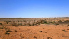 Rural / Farming commercial property for sale at Sect. 15 Taylorville Road Waikerie SA 5330