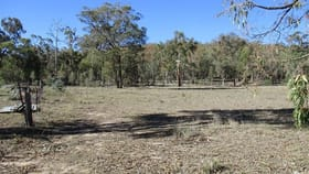 Rural / Farming commercial property for sale at 220 Glenbarra Road Watsons Creek NSW 2355