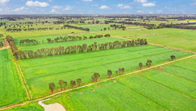 Rural / Farming commercial property for sale at 310 Lorenz Road Stanhope VIC 3623