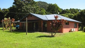 Rural / Farming commercial property for sale at 1367 Old Tully Road Maadi QLD 4855