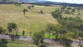 Rural / Farming commercial property for sale at 69 Steinbrook Hall Road Tenterfield NSW 2372