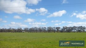 Rural / Farming commercial property for sale at C/A 12F 8076 Donald-Stawell Road Stawell VIC 3380