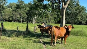 Rural / Farming commercial property for sale at 5 Valles road Bemerside QLD 4850