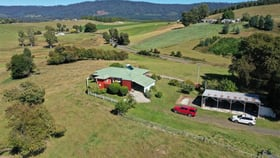 Rural / Farming commercial property for sale at 35973 Tasman Highway Springfield TAS 7260