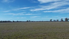 Rural / Farming commercial property for sale at . Phillips Road Glenorchy VIC 3385