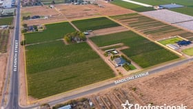 Rural / Farming commercial property for sale at 2738 Eleventh St & 337-355 Sandilong Ave Nichols Point VIC 3501