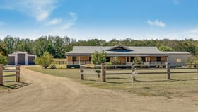 Rural / Farming commercial property sold at 169 Rosenthal Road, Rosenthal Heights Warwick QLD 4370