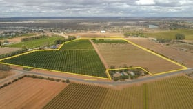 Rural / Farming commercial property for sale at 30 Wonega Avenue Red Cliffs VIC 3496