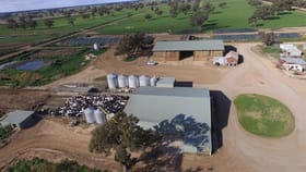 Rural / Farming commercial property for sale at 1 Moulamein Road Wakool NSW 2710