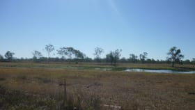 Rural / Farming commercial property for sale at Lot  113 Edwards Road Pink Lily QLD 4702