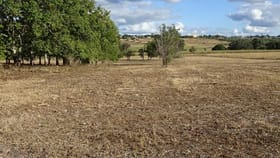Rural / Farming commercial property for sale at Lot 10/ Green Valley Court North Isis QLD 4660