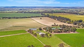 Rural / Farming commercial property for sale at 411 Burnside Road Strathalbyn SA 5255