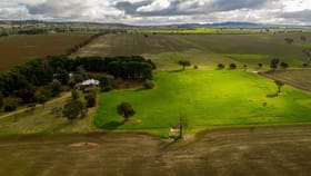Rural / Farming commercial property for sale at Carwilla, 149 Alleyns Road Wagga Wagga NSW 2650