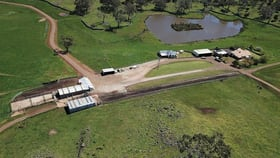 Rural / Farming commercial property for sale at - Thorntons Road East South Purrumbete VIC 3260