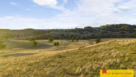 """Rural / Farming commercial property for sale at """"Binomea East"""" 2319 Lower Piambong  Road Piambong NSW 2850"""